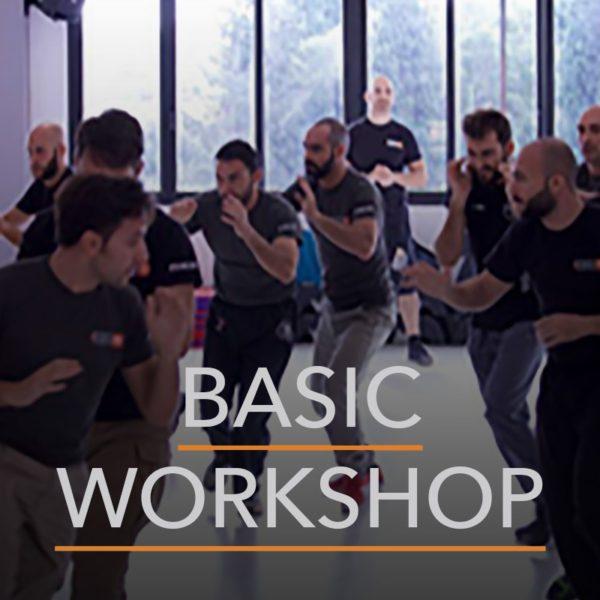 Krav Maga Basic Seminar