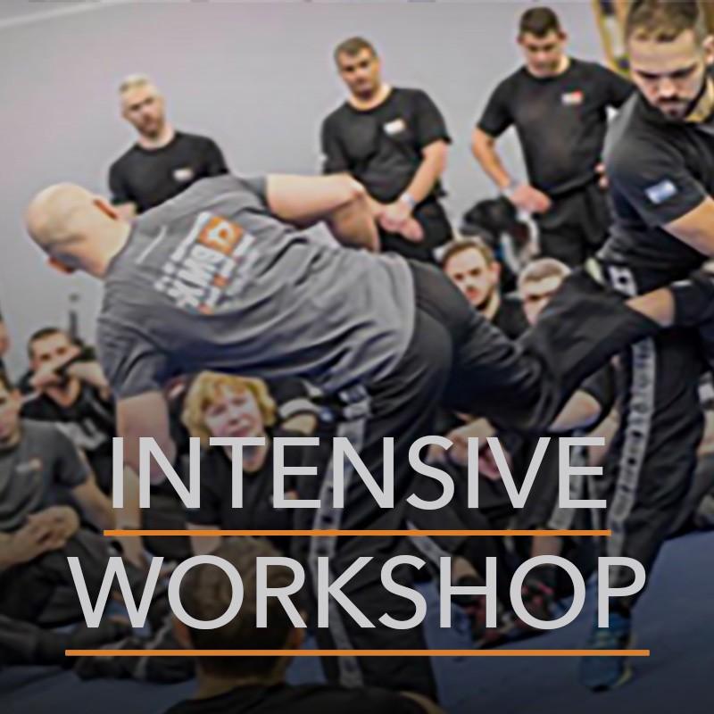 Krav Maga Intensive Workshop München